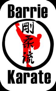 Barrie Karate Demo